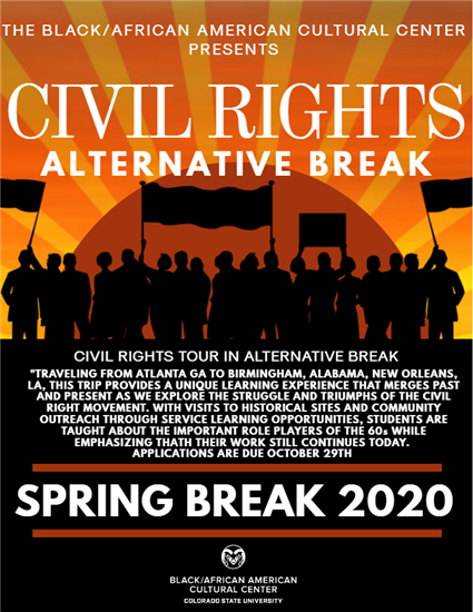 Civil rights alternative break poster
